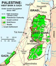 palestine-chart
